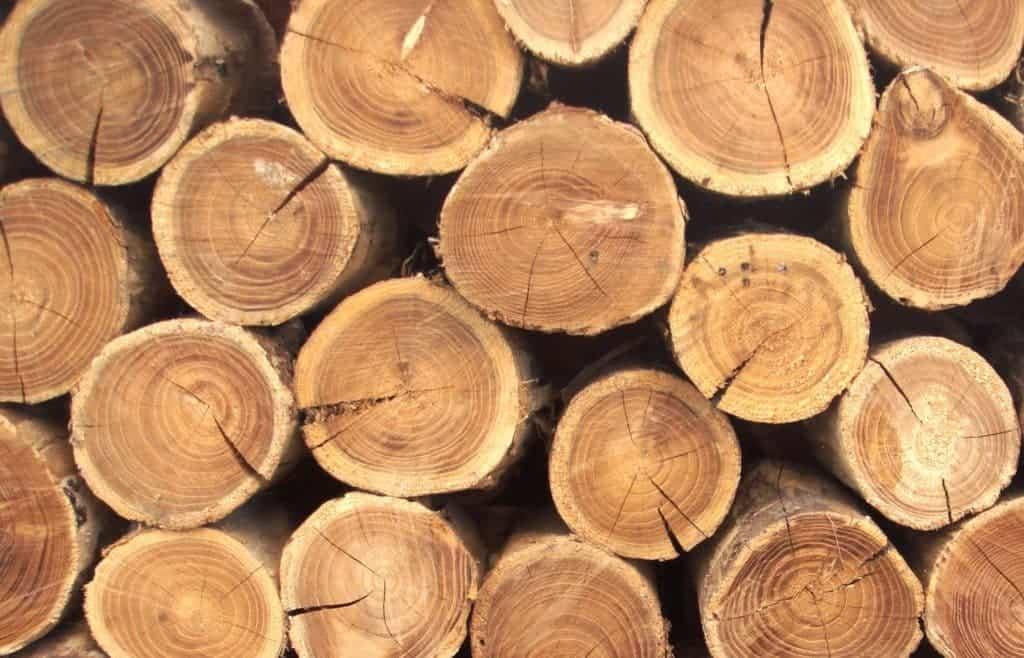 Выбор древесины для производства деревянной тары
